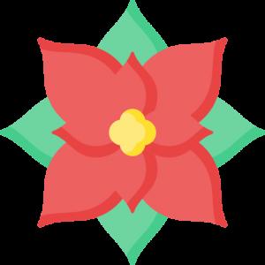 Navidad Flores